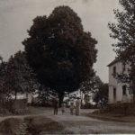Valcha - historický pohled